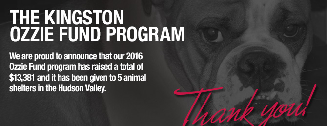 Animal Shelters Hudson Valley