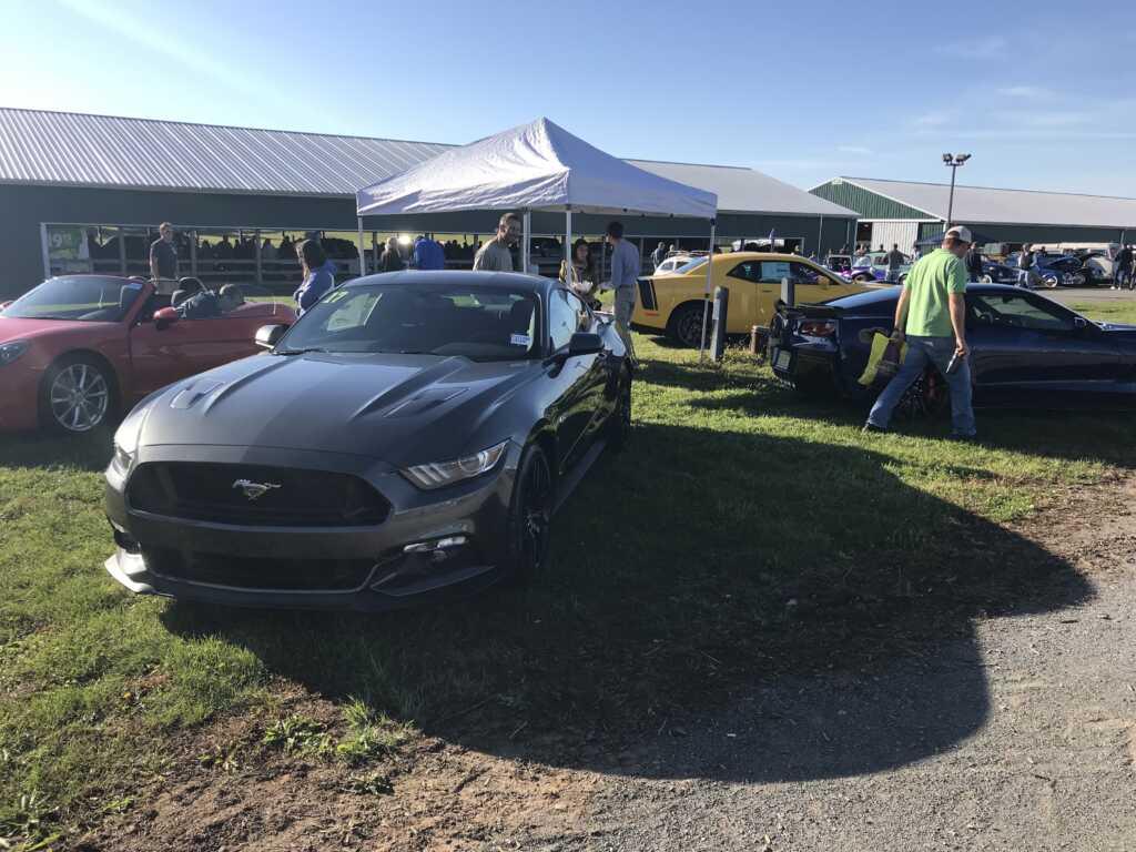 Gray Ford Mustang